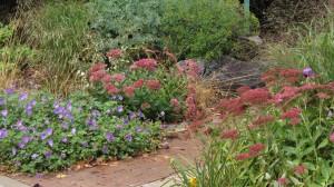 Fall_Garden