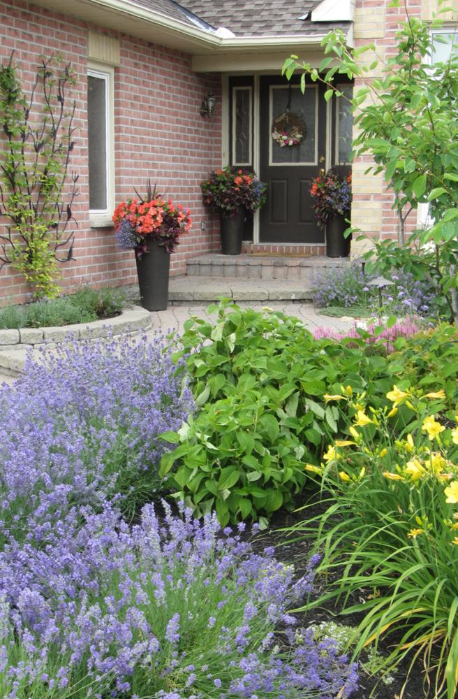Easy Curb Appeal Ideas